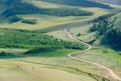 Pastoraal stock foto