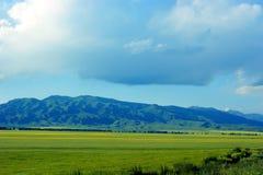 Pastoraal landschap Stock Afbeeldingen
