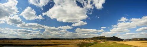 Pastoraal landschap Royalty-vrije Stock Fotografie