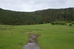 Pastoraal landschap Royalty-vrije Stock Afbeeldingen