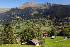 Pastoraal Zwitserland Stock Afbeeldingen