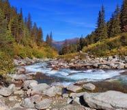 Pastoral in the Alpine Krimml waterfalls Royalty Free Stock Image
