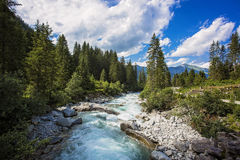 Pastoral in the Alpine mountain valley in Austria. Cascades of cold water at the source of the famous Krimml waterfalls Royalty Free Stock Photo