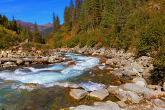 Pastoral in the Alpine stream Royalty Free Stock Images