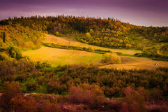 Pastoral Autumn Landscape Environment Stock Photo