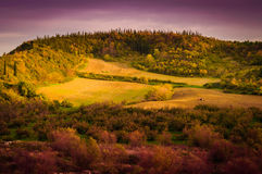 Pastoral Autumn Landscape Environment Royalty Free Stock Photo