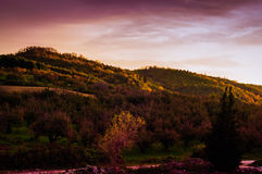 Pastoral Autumn Landscape Environment Stock Photo