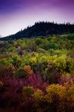 Pastoral Autumn Landscape Environment Stock Photography