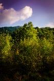 Pastoral Autumn Landscape Stock Photography