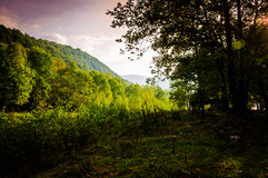 Pastoral Autumn Landscape Royalty Free Stock Images