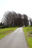 Pastoral Countryside Road. Between the fields and trees stock photography
