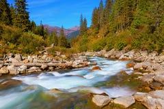 Pastoral dans la vallée alpine de montagne image stock