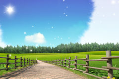 Pastoral / Field And Forest Stock Photo