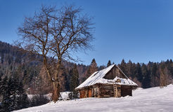 Pastoral hut in snow clearing in the winter Royalty Free Stock Photo