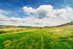 Pastoral landscape. The beautiful summer pastoral landscape stock photo