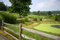 Pastoral Landscape. Lanscape at a winery in Western Connecticut Stock Photography