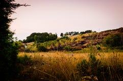 Pastoral Landscape Royalty Free Stock Photo