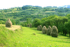 Pastoral landscape (Maramures, Romania) Stock Photo