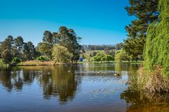 Pastoral Northern California Royalty Free Stock Images