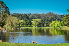 Pastoral Northern California Royalty Free Stock Photography