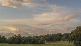 Pastoral pasture Royalty Free Stock Photo