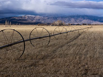 Pastoral ranchland in the Eastern Sierra Nevada Ra Royalty Free Stock Images