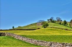 Pastoral scene of lush English meadows Stock Photo