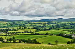 Pastoral scene of lush green English farmland. Wth a grazing flock of sheep on rolling pastures dotted with farmhouses leading to distant blue hills Stock Image