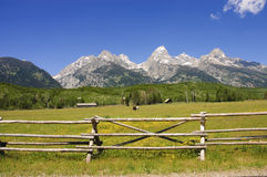 A pastoral scene in the Tetons Royalty Free Stock Photography
