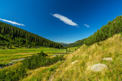 Pastoral summer scenery in the mountains Stock Photo
