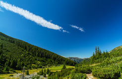 Pastoral summer scenery in the mountains Royalty Free Stock Images