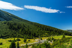 Pastoral summer scenery in the mountains Royalty Free Stock Photos