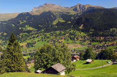 Pastoral Switzerland. Typical landscape in the Alps, Switzerland Stock Images