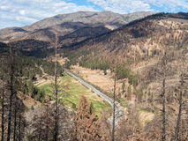 Pastoral valley saved from the forest fire Royalty Free Stock Images