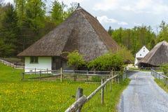 Pastorale della campagna svizzera Immagine Stock Libera da Diritti