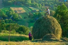 Pastorale Scene in the Romanian Countryside stock images
