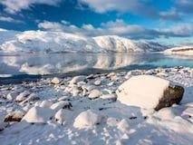 Pastoralny mornig przy zimy fjord fotografia royalty free