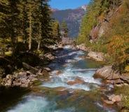 Pastoralny w Alpejskiej halnej dolinie zdjęcia royalty free