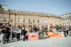 Pastore del mare che protesta contro l'arresto delle balene pilota di macello di Fotografia Stock