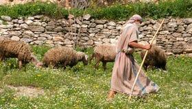 Pastore e moltitudine Fotografia Stock Libera da Diritti