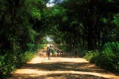 Pastores Turkana (Kenia) fotografía de archivo libre de regalías