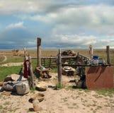 Pastori kazaki della cucina di campo Fotografie Stock Libere da Diritti