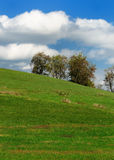 Pastorial Landschaft Stockfotografie