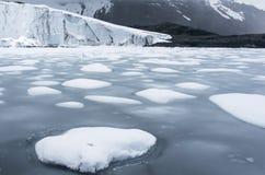 Pastoruri glaciär i Cordillera Blanca, Peru Royaltyfria Foton