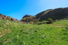 Pastos da montanha com céus azuis Imagens de Stock Royalty Free