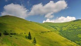 Pastos da montanha em Ucrânia Imagens de Stock Royalty Free