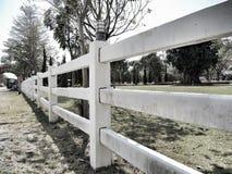 Pastos de explorações agrícolas do cavalo foto de stock