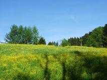 Pastos e montes de Herisau imagem de stock royalty free