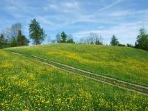 Pastos e montes de Herisau fotografia de stock royalty free
