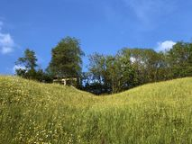 Pastos e pastagem alpinos no vale de Wagital ou de Waegital e pelo lago alpino Wagitalersee Waegitalersee, Innerthal fotos de stock royalty free